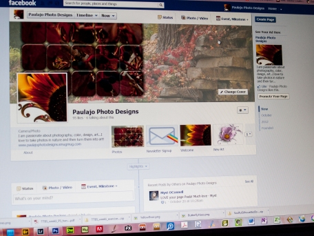 paulajo Photo Designs on FB